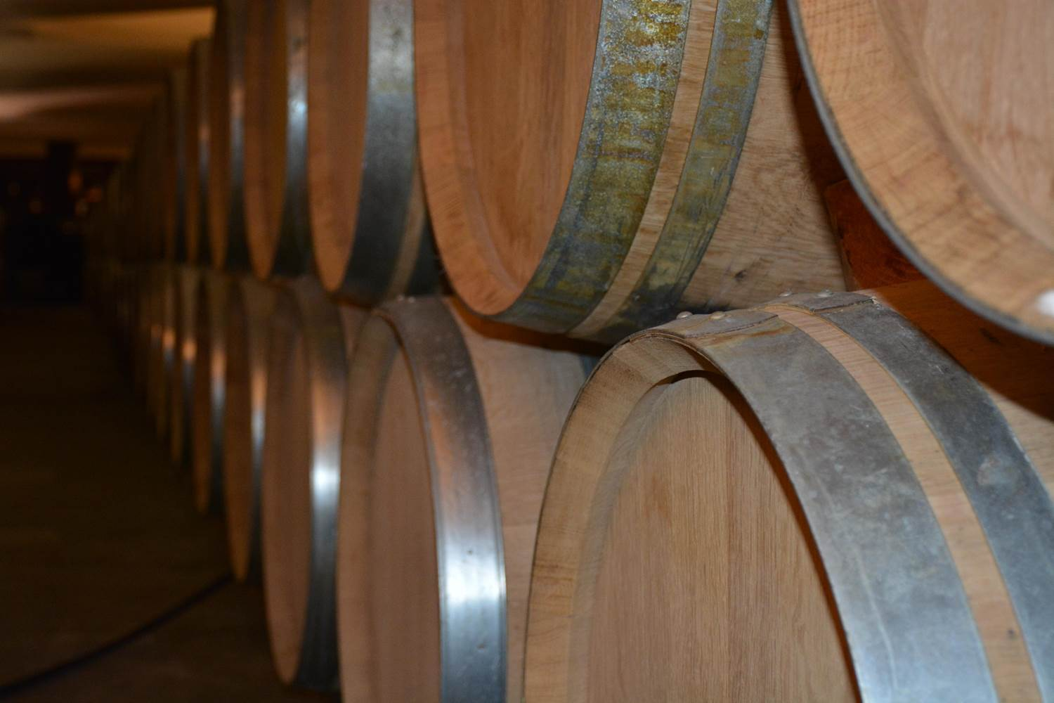 Wine testing must be accredited – Czech Inspection Authority