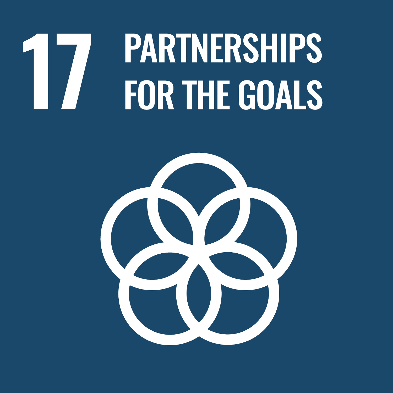 Partnerships For Goals